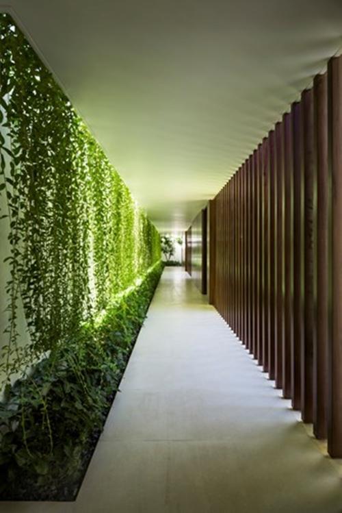 Điểm thú vị nhất của ngôi nhà chính là một hành lang dài xuyên suốt các căn phòng và ô sân vườn tự nhiên.