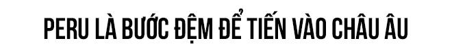 """Phó tổng giám đốc Viettel Lê Đăng Dũng: """"Chúng tôi vẫn nuôi giấc mơ vào châu Âu"""" - Ảnh 7."""
