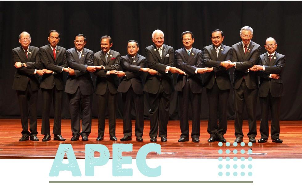 """APEC, toàn cầu hóa và những """"cơn gió ngược"""" - Ảnh 13."""