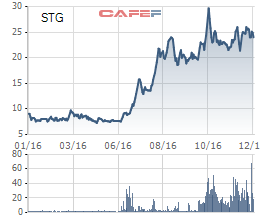 Thị giá cổ phiếu STG hiện dao động quanh ngưỡng 24.000 đồng/cp