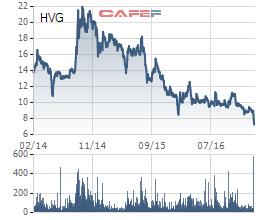 Cổ phiếu HVG ở trong xu hướng giảm liên tục từ cuối năm 2014