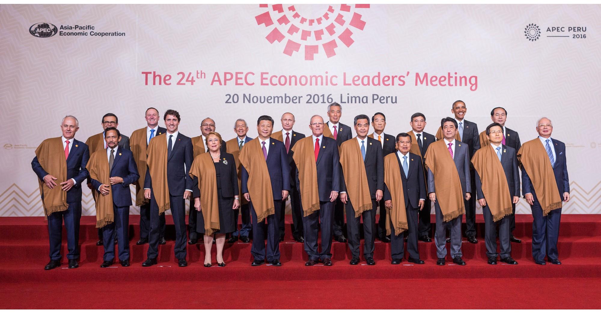 """APEC, toàn cầu hóa và những """"cơn gió ngược"""" - Ảnh 8."""