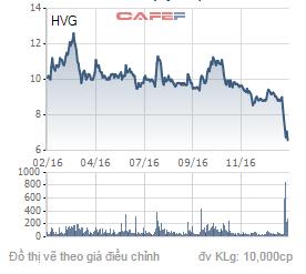 Biến động giá cổ phiếu HVG trong 1 năm qua.
