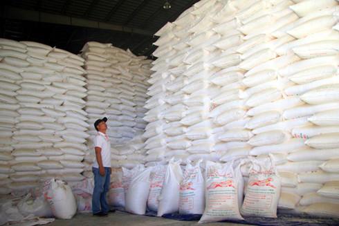 Các nhà máy chế biến tinh bột sắn ở Kon Tum đều sản xuất cầm chừng.