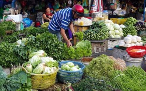 Giá rau xanh tại Hà Nội những ngày gần đây tăng cao gấp 3 lần so với trước. (Ảnh minh họa: Internet)
