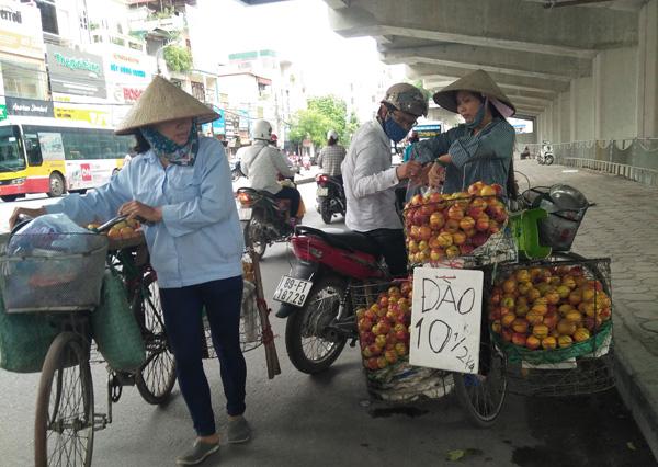 Hà Nội có dẹp được tình trạng trái cây bán rong, không rõ nguồn gốc?