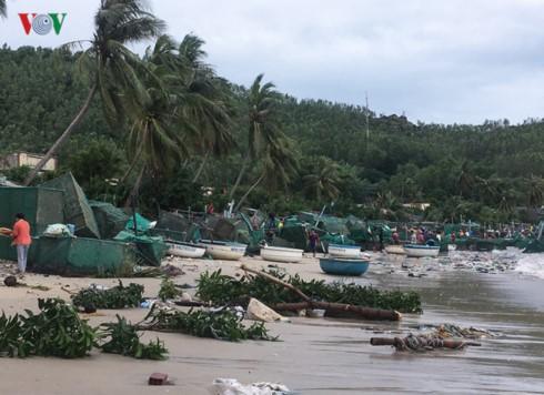 Vịnh Hòa, thị xã Sông Cầu một ngày sau bão, cả làng biển như một bãi chiến trường. Lồng tôm bị sóng đánh vỡ, méo mó, dồn thành từng đống.