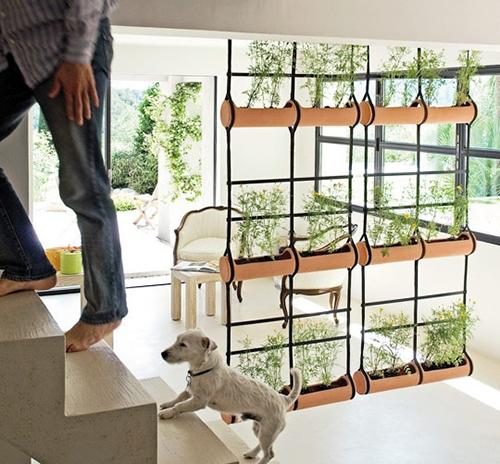 Nếu nhà bạn không đủ rộng để đặt những khóm cây, hãy nghĩ đến việc tạo một bức tường xanh với những khay đựng cây được treo thẳng đứng, nối tiếp nhau.