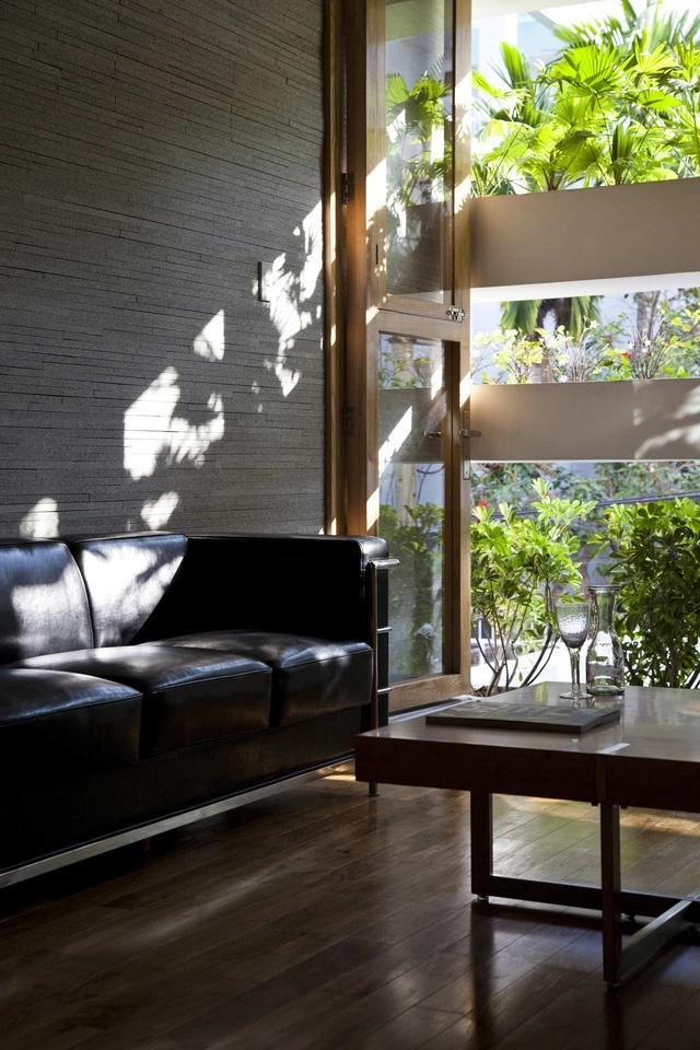 Không gian trong nhà là cả một hệ sinh thái thu nhỏ
