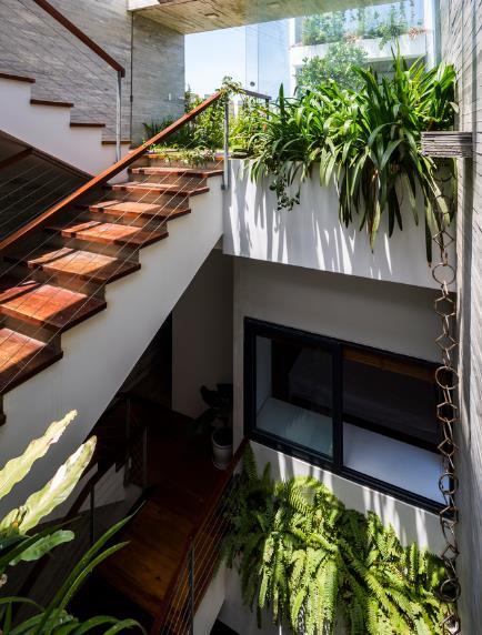 Cầu thang đi lên các tầng được bố trí cạnh giếng trời với cây xanh tạo lối đi tuyệt đẹp.