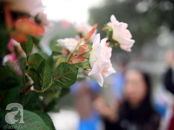 Phía cổng được trang trí bằng hoa hồng... giả.