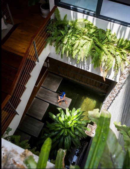 Bể cá cảnh tràn ngập cây xanh nơi tầng 1 nhìn từ trên cao.