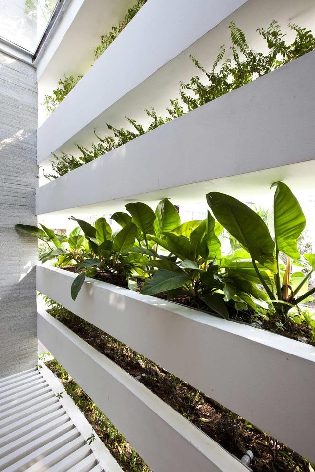 Một hệ thống tưới tự động đặt bên trong các bồn hoa để tưới nước dễ dàng mà vẫn giữ được vẻ tự nhiên cho hình khối.