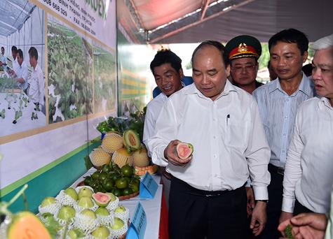 Thủ tướng xem các sản phẩm áp dụng công nghệ cao của Trung tâm. Ảnh: VGP/Quang Hiếu