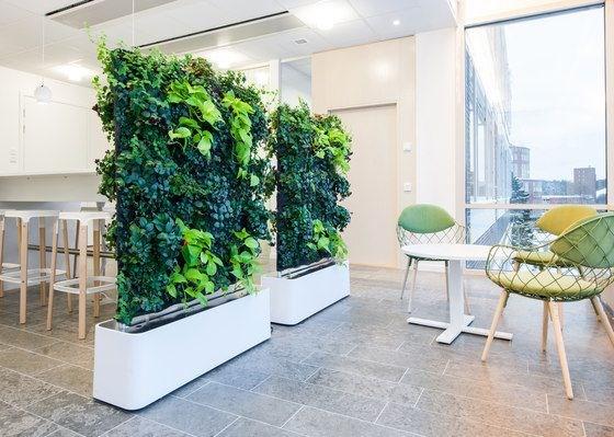 Dù nhà bạn được thiết kế như thế nào, theo xu hướng trang trí ra sao thì sự có mặt của vách ngăn cây xanh vẫn trở thành tâm điểm của mọi ánh nhìn khi vào phòng.