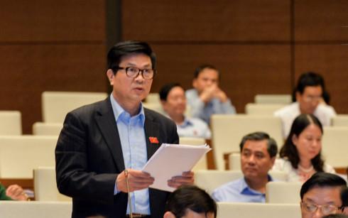Đại biểu Quốc hội Đỗ Ngọc Thịnh.