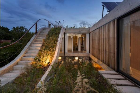Cây xanh được nối tiếp nhau từ tầng 1 lên mái nhà.