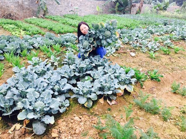 Chị Phong bên mảnh vườn do chính công sức lao động của cả gia đình tạo ra.