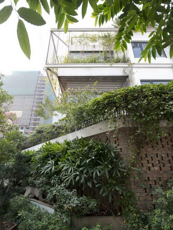 Tường rào bao quanh ngôi nhà được xây bằng gạch cũ và phủ kín bởi cây xanh.