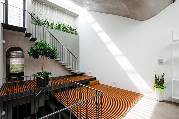 Không gian nơi đó còn được trồng rất nhiều cây có màu xanh tươi mát và lọc không khí cho ngôi nhà.
