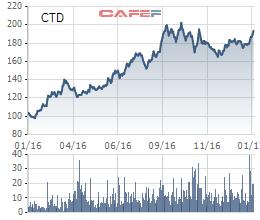 Diễn biến giá cổ phiếu CTD trong 1 năm qua.
