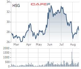 Cổ phiếu HSG đã tạo ra nhiều sóng trong 6 tháng gần đó.
