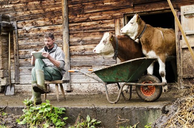 Nông nghiệp Pháp đi lên con đường cường quốc từ nền tảng manh mún như thế nào? - Ảnh 1.