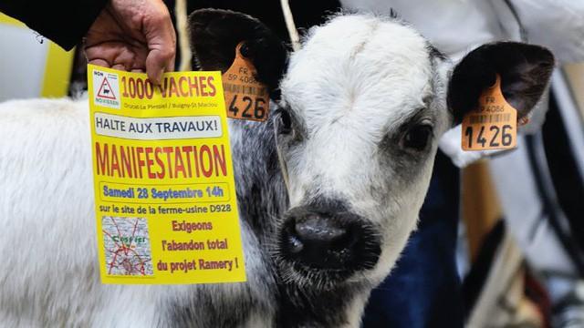Nông nghiệp Pháp đi lên con đường cường quốc từ nền tảng manh mún như thế nào? - Ảnh 4.