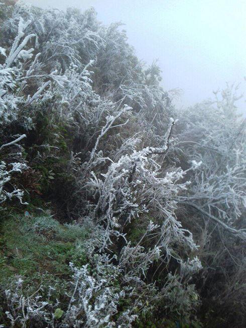 Băng tuyết phủ dầy trên đỉnh Mẫu Sơn - Ảnh 1.