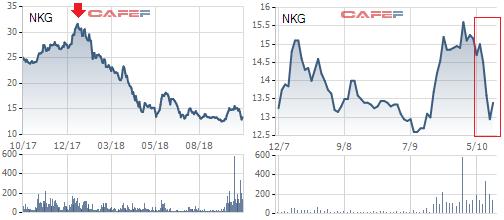 Một tuần liên tục phá đáy và bị bán tháo, Thép Nam Kim (NKG) đã hết vị? - Ảnh 1.