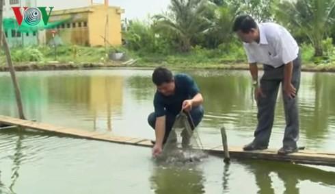 Cá lăng nha giá trị kinh tế cao được nông dân nhân giống thành công - Ảnh 2.