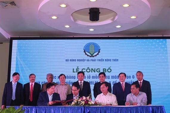 Công bố sản xuất thành công vacxin lở mồm long móng ở Việt Nam - Ảnh 1.