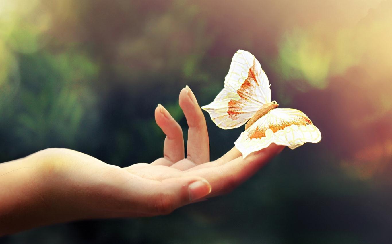 """Không muốn bị rơi vào hoàn cảnh """"càng hy vọng lắm, càng thất vọng ..."""