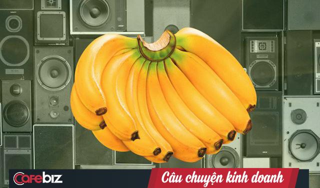 """Dùng tiếng lóng quảng cáo dàn loa giá """"299 bananas"""", khách hàng nghiêm túc mang 11.000 quả chuối thật đến đổi khiến chuỗi điện máy lỗ nặng - Ảnh 3."""