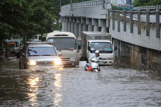 Sáng 26-11, TPHCM nhiều nơi vẫn ngập sâu, rác, nhánh cây gãy la liệt - Ảnh 2.
