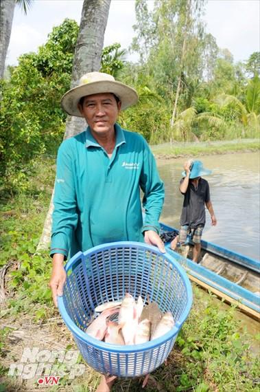 Cận cảnh nuôi cá ruộng mùa lũ ở miền Tây không cho ăn vẫn lớn như thổi - Ảnh 14.