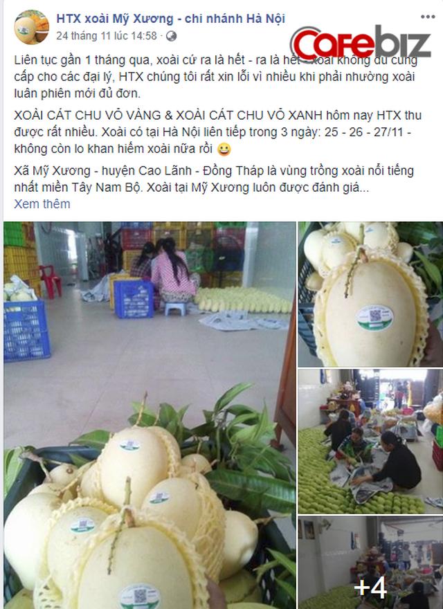 Lên đời xoài Cát Chu thành xoài blockchain, nông dân Đồng Tháp trồng không xuể để bán - Ảnh 1.