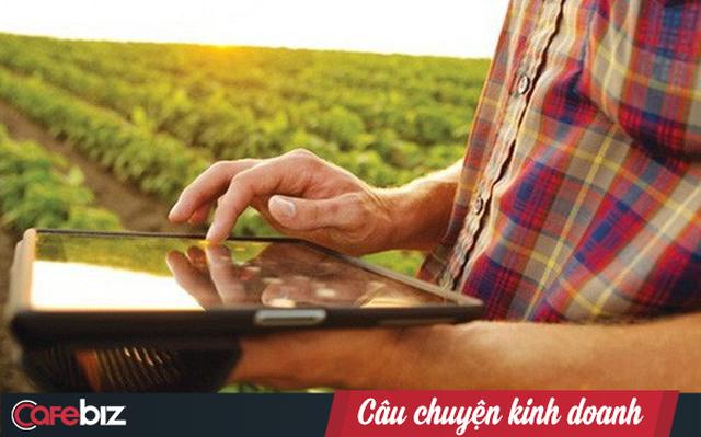 Lên đời xoài Cát Chu thành xoài blockchain, nông dân Đồng Tháp trồng không xuể để bán - Ảnh 2.