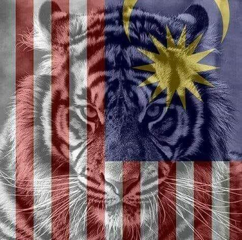 Fan Malaysia vui sướng tột cùng, hả hê đăng ảnh mỉa mai thủ môn nói trước bước không qua của Thái Lan - Ảnh 6.