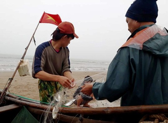 """Ngư dân Sầm Sơn trúng đậm """"lộc biển"""" ngày đầu năm mới - Ảnh 9."""