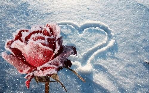 Thời tiết lạnh khắc nghiệt - cảnh giác nguy cơ đột quỵ - Ảnh 1.