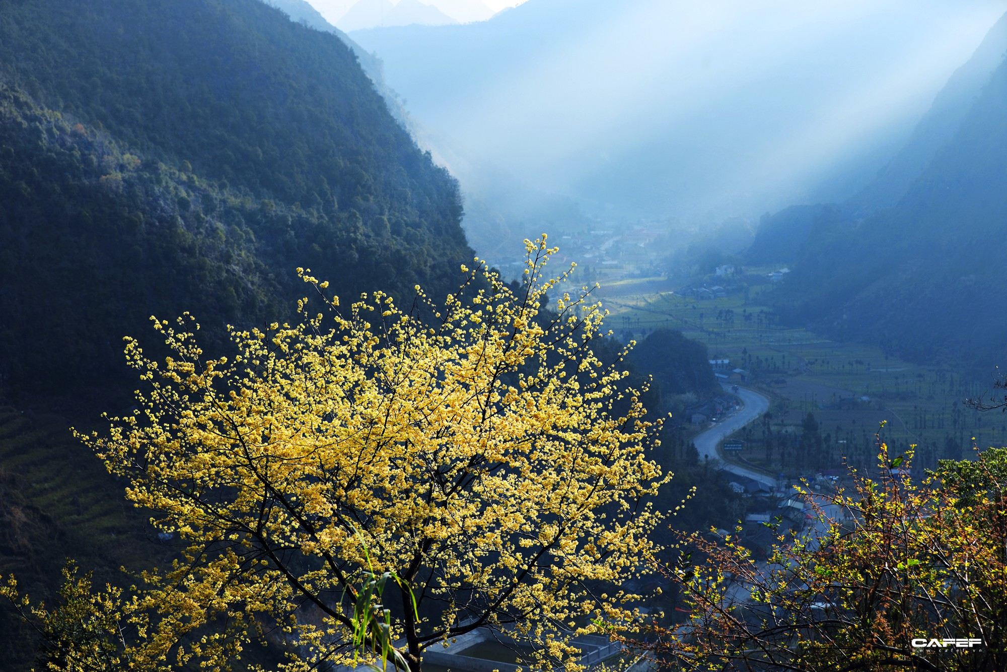 Đến Hà Giang mùa xuân, ngẩn ngơ xem đá nở hoa - Ảnh 12.