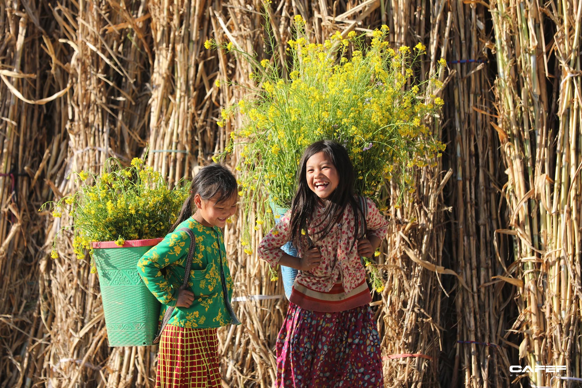Đến Hà Giang mùa xuân, ngẩn ngơ xem đá nở hoa - Ảnh 11.
