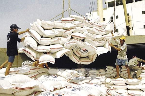 Xuất khẩu gạo khởi sắc: Vừa mừng vừa lo - Ảnh 2.