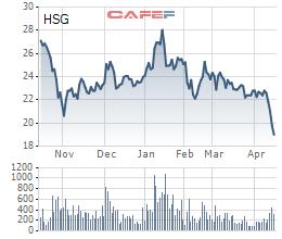 HSG giảm sâu, Công ty Tâm Thiện Tâm vẫn quyết phân phối bớt 5 triệu cổ phiếu - Ảnh 1.
