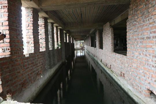Cận cảnh hoang tàn dự án bệnh viện 700 giường đầu tư 850 tỉ đồng - Ảnh 17.