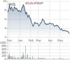 Cổ phiếu HVG của Hùng Vương bị đưa vào diện bị kiểm soát đặc biệt để bảo vệ nhà đầu tư - Ảnh 1.