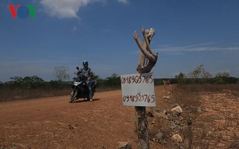 Đất nông nghiệp được rao bán tràn lan tại Phan Thiết - Ảnh 1.