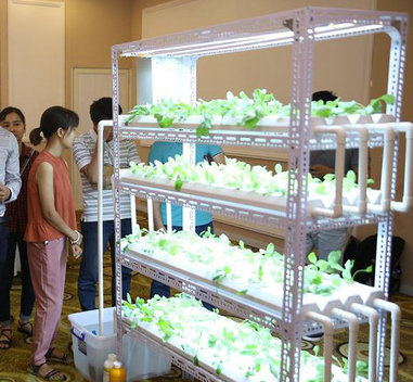 [Case study] Trồng rau sạch trong nhà, không cần đất, nước, ánh sáng, không cần chăm bón: Làm sao để biến ý tưởng thành hóa đơn? - Ảnh 1.
