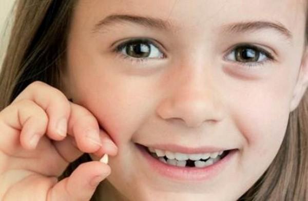 Đừng bao giờ vứt chiếc răng sữa của con đi vì nó sẽ cứu sống con bạn đấy! - Ảnh 1.